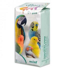 FIORY Песок для птиц МЯТА 1кг 6815
