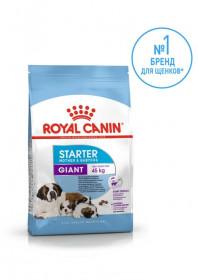 Корм для собак Royal Canin Giant Starter