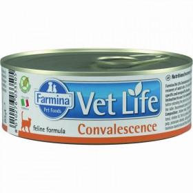Farmina Vet Life Convalescence влажный корм для взрослых кошек в период выздоровления
