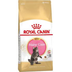 Корм для котят Royal Canin Kitten Maine Coon породы Мейн Кун